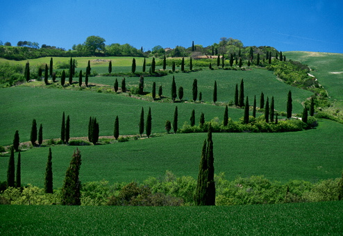 Villa in Tuscany: Inland or Coastal?