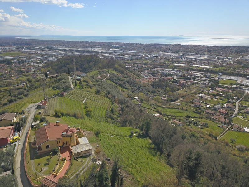 Villa in Versilia with sea view